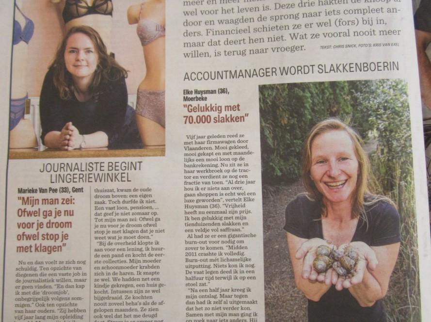 In het Nieuwsblad, over carrièreswitchen